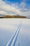 Trilha do esqui Foto de Stock Royalty Free