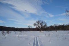 A trilha do esqui acaba-se fotografia de stock