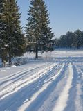 Trilha do esqui na neve fresca Imagem de Stock Royalty Free