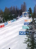 Trilha do Snowboard Foto de Stock