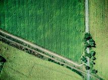 Trilha e estrada de ferro paralela no campo do país Fotografia de Stock