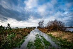 Trilha inundada do acesso do fenland Fotografia de Stock