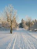 Trilha na neve imagens de stock