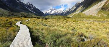 Trilha no cozinheiro National Park - Nova Zelândia da montagem imagem de stock