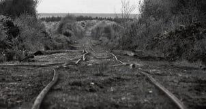 Trilha oxidada do trem Imagens de Stock