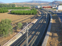 Trilha Railway e bosque alaranjado Fotografia de Stock