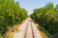 Trilha railway reta com árvores verdes ao longo do caminho Imagens de Stock Royalty Free