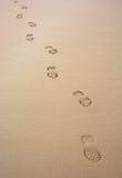 Trilha reta na areia Fotos de Stock Royalty Free