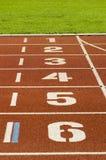 Trilha Running Foto de Stock