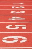 Trilha Running Imagem de Stock