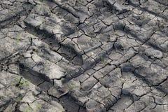 Trilha seca da roda na textura do solo da sujeira Fotografia de Stock Royalty Free