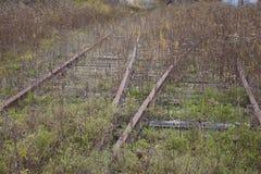 Trilhas abandonadas Foto de Stock Royalty Free