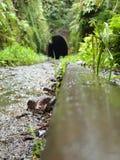Trilhas abandonadas do trem do estação de caminhos-de-ferro Fotografia de Stock Royalty Free