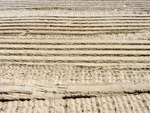 Trilhas com nervuras da roda na areia seca Foto de Stock Royalty Free