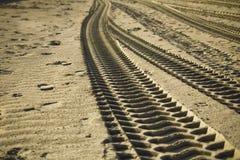 Trilhas da areia Imagens de Stock Royalty Free