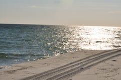 Trilhas da linha costeira ATV foto de stock royalty free