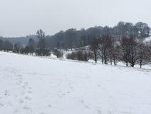 Trilhas da neve Foto de Stock Royalty Free