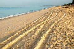 Trilhas da praia Foto de Stock