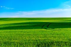 Trilhas da terra de exploração agrícola de Ontário Fotografia de Stock Royalty Free