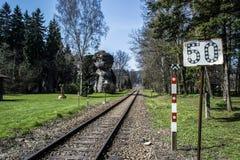 Trilhas da trilha Railway e uma estátua de madeira Imagens de Stock Royalty Free