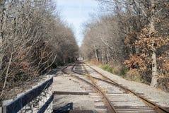 Trilhas de estrada de ferro de cruzamento Imagem de Stock Royalty Free