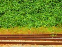Trilhas de estrada de ferro em Geórgia imagens de stock royalty free