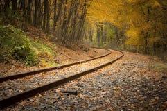 Trilhas de estrada de ferro na queda Fotografia de Stock Royalty Free