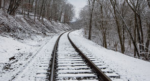 Trilhas de estrada de ferro nevado Imagens de Stock Royalty Free
