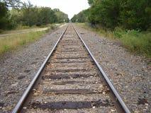 Trilhas de estrada de ferro perto das madeiras Fotografia de Stock