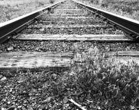 Trilhas de estrada de ferro no baixo ângulo preto e branco fotografia de stock