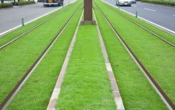 Trilhas do bonde no gramado verde Imagem de Stock
