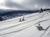 Trilhas do esqui de Freeride na neve Foto de Stock