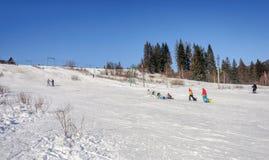 Trilhas do esqui na inclinação de montanha em Carpathians, Ucrânia Fotografia de Stock