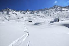 Trilhas do esqui na neve do pó Imagem de Stock Royalty Free