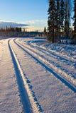 Trilhas do inverno imagens de stock royalty free