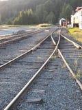 Trilhas do Mt Rainer Train Foto de Stock Royalty Free