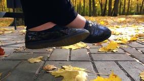 Trilhas do outono no parque com folhas amarelas filme