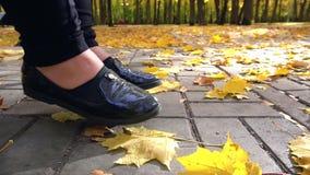 Trilhas do outono no parque com folhas amarelas vídeos de arquivo