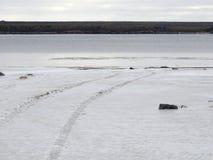Trilhas do pneu na neve pela água fotografia de stock royalty free