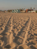 Trilhas do pneu na praia de Veneza Fotografia de Stock