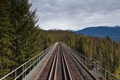 Trilhas do trem Imagem de Stock Royalty Free