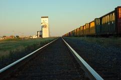 Trilhas do trem ao elevador de grão Imagens de Stock