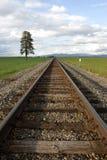 Trilhas do trem através do campo. fotografia de stock royalty free
