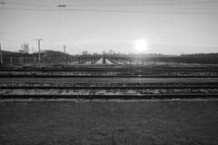Trilhas do trem com o vinhedo no inverno Imagem de Stock