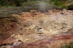 Trilhas do urso no vale dos geysers Foto de Stock Royalty Free