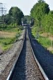 Trilhas e árvores rurais do trem imagens de stock
