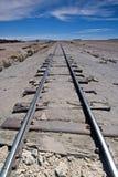 Trilhas e horizonte do trem Imagens de Stock Royalty Free
