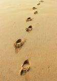 Trilhas em uma areia Foto de Stock