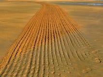 Trilhas na areia imagens de stock