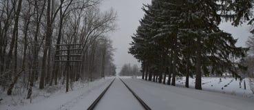 Trilhas na neve foto de stock